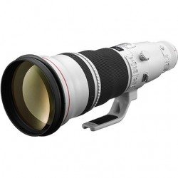 Canon EF 600mm f4L IS II USM Lens