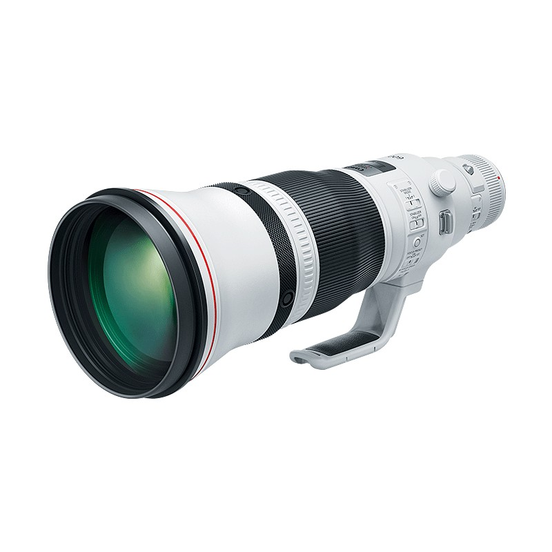 Canon EF 600mm f4L IS III Lens