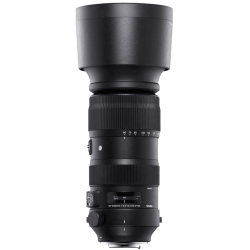 Sigma 60-600mm f4.5-6.3 DG OS HSM Sports Lens - Nikon
