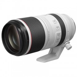 Canon RF 100-500mm f4.5-7.1L IS USM Lens