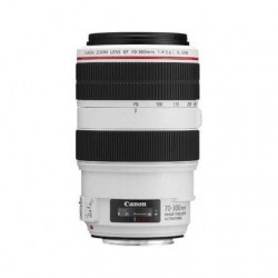 Canon EF 70-300mm f4-5.6L IS USM Lens