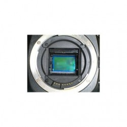 Digital SLR Sensor Cleaning Service