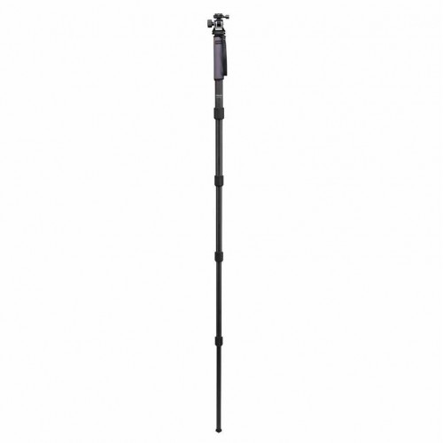 Indro GIM505XLTH4 Grand Series Stealth Carbon Fiber Monopod Kit with TH4 head